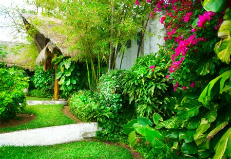 Do You Need Home Landscaping Services Landscapers What Do Landscapers Do