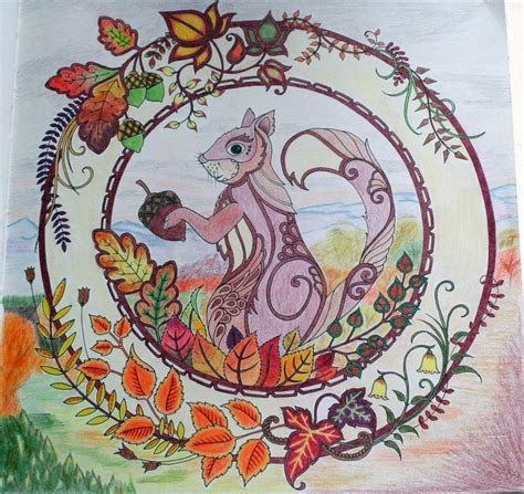 Enchanted Forest Coloring Card Bentuk Kartu johanna basford enchanted forest coloring primacolor