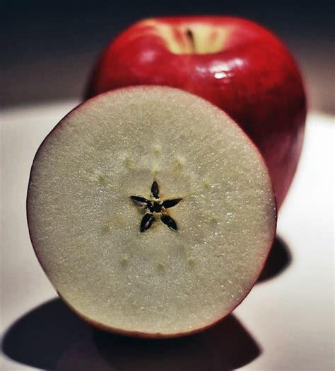 Aple Syar I apple of desire fruit flesh and pleasure count