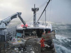 metal shark boats wiki commercial fishing in alaska wikipedia
