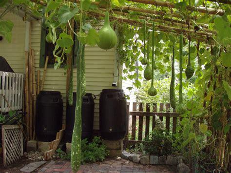Bamboo Garden Hours by Speaking Of Garden Parties Hip House
