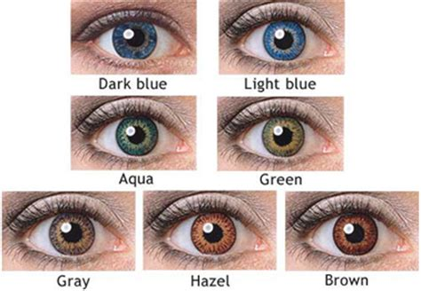 expression color contacts expressions colors contact lenses colored contact lenses