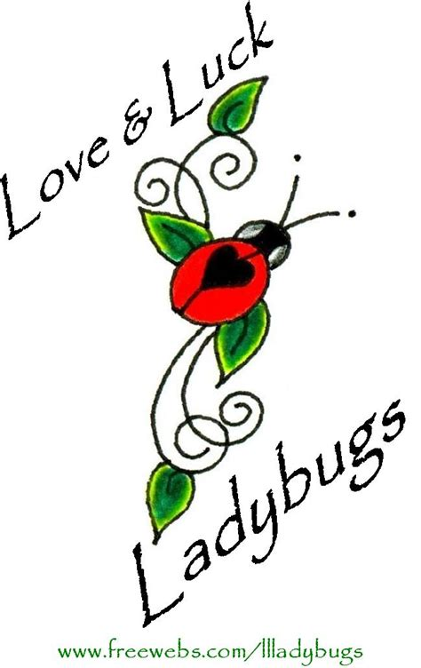 Why Are There So Many Ladybugs In My House 28 Images Ladybugs Luck Professional
