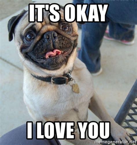 Birthday Pug Meme - related keywords suggestions for happy pug meme