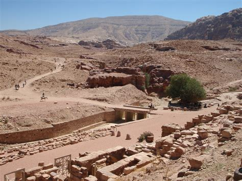 brown archaeological project