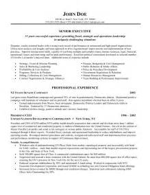 Cfo Resume Templates by Cv Template Harvard Http Webdesign14