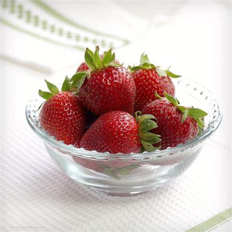 piantare le fragole in vaso coltivare le fragole piccoli frutti coltivare le fragole
