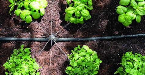 automatic watering systems hozelock irrigation
