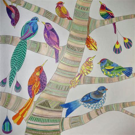 libro millie marottas tropical wonderland tropical wonderland the hels project