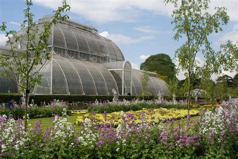 kew gardens botanical royal botanic gardens kew fund