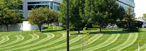 lawn care delaware ohio landscaping delaware top notch