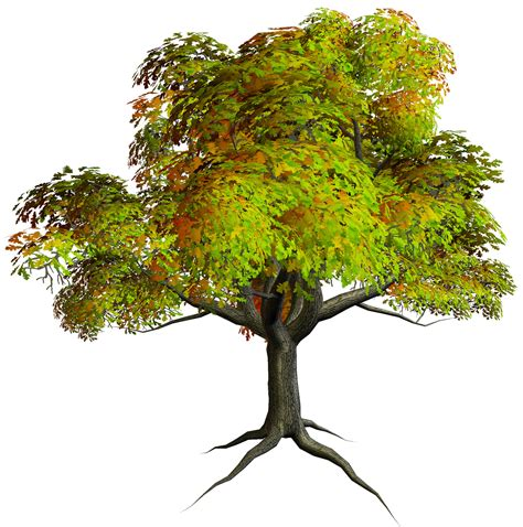 tree images tree clip templates free clipart images cliparting