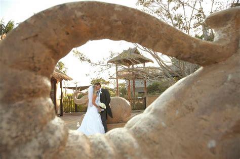 Wedding Ceremony Taronga Zoo by Wedding With A View At Taronga Zoo Modern Wedding