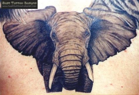 wild tattoos tattoos elephant tattoos for