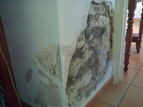 traiter l humidité dans une maison 2875 comment nettoyer humidit 233 mur la r 233 ponse est sur admicile fr