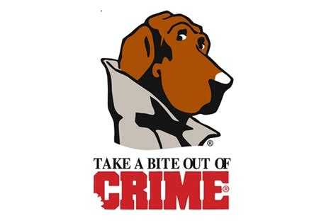 Department Of Safety Crime Records Mcgruff