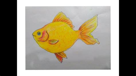 Stelan Gold Fish Kid how to draw a gold fish with pastel easy drawing tutorial