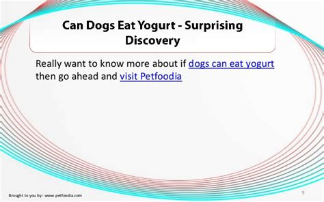 can puppies eat yogurt is cottage cheese for diarrhea is cottage cheese for you new health advisor