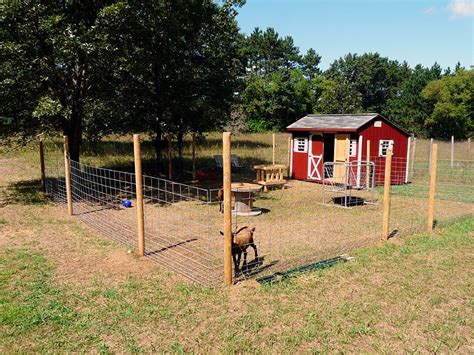 Goat Housing Plans Modern Goat Shed