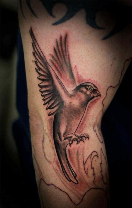 sparrow tattoo black and grey nathan boon tattoonow