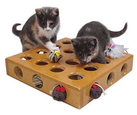 petsmart puppy toys smartcat cat pet box to help improve the cat s instincts petslu