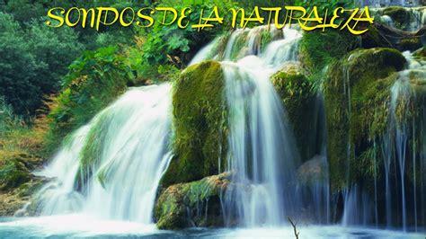 imagenes de sonidos naturales cascada paraiso sonidos de la naturaleza sound of nature