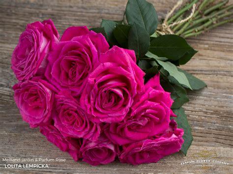 Parfum Flower parfum flower company for florists