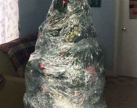 plastic wrapped christmas tree hometalk