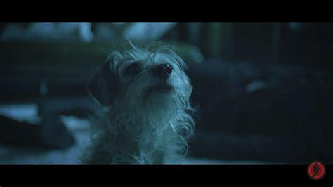 wick puppy wick s best friend goes gun fu in rocketjump s spoof trailer