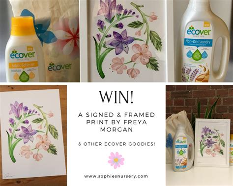 Giveaways Uk - ecover uk laundry giveaway signed framed print by freya morgan sophie s nursery