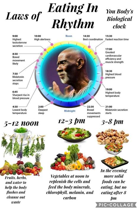Dr Sebi Detox Diet by 25 Best Ideas About Dr Sebi Cleanse On Dr