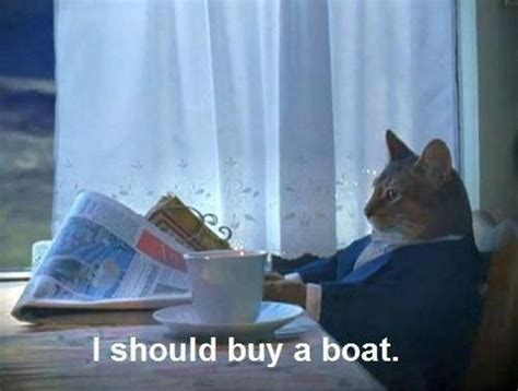 i should buy a boat cat - I Should Buy A Boat This Was A Good Decision