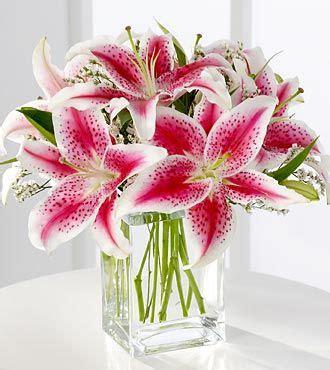 Vas Bunga One Pieces By Kjperabot 25 best ideas about stargazer lilies on tiger