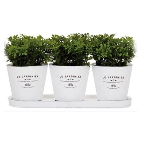 kitchen indoor herb planters eatwell101