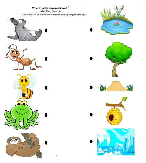 their home free printable matching animals to their home worksheet 7 seed home crafts