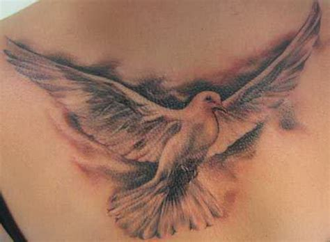 best free tattoo designs free pictures dove universal symbol peace