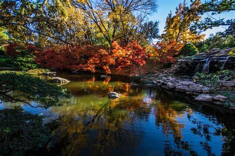 fort worth botanic garden botanic garden in fort worth thousand wonders