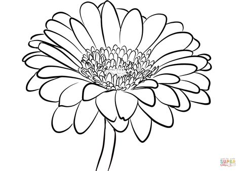 coloring page daisy flower gerbera daisy coloring page free printable coloring pages