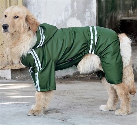 medium sized golden retriever big raincoat golden retriever samoyed large breed waterproof pet raincoat large