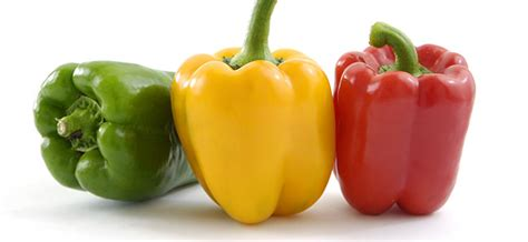 vegetables on atkins low carb fruits veggies for summer atkins
