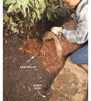 how to keep dogs out of flower beds how to keep dogs out of flower beds 28 images how to keep dogs out of flower beds