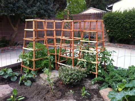 Vegetable Garden Trellis Beautiful Tomato Trellises Vegetable Garden Dreams