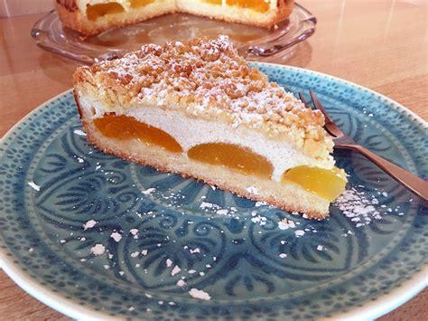 kuchen vegan einfach aprikosen quark kuchen vegane naschkatzen
