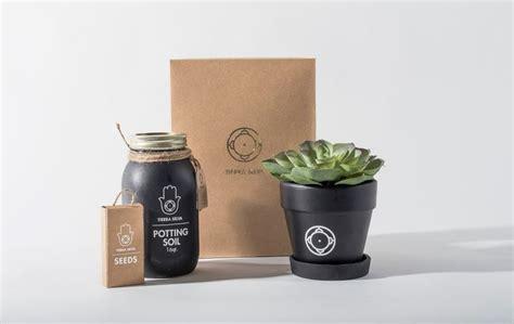 portable planting kits diy herb garden