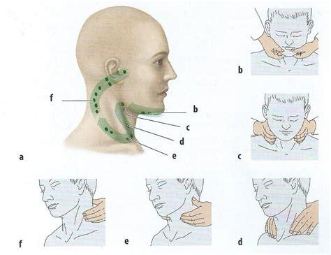cadenas ganglionares cabeza y cuello alteraciones bucales ganglios linfaticos de cabeza y cuello