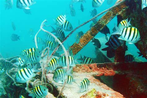 key west boat wreck snorkeling key west dive key west the vandenberg wreck