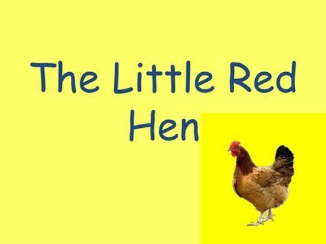 The Hen Book Report by Hen Book To Print By Jamlips Teaching Resources Tes