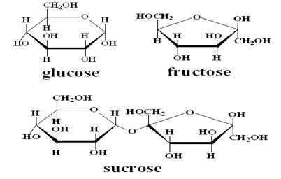 what is the chemical makeup of sugar mugeek vidalondon