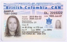 Card Security Privacy Canadian Auto Id Card Template
