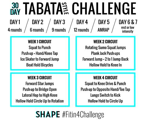 the 30 day tabata style workout challenge that will